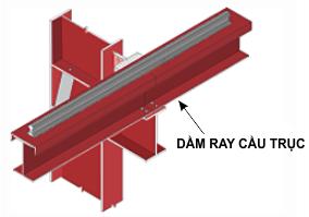 dam-ray-cau-truc